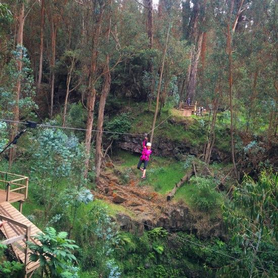 Haleakala eco adventures zip lining maui